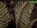 daorigins-2014-10-09-10-49-04-24